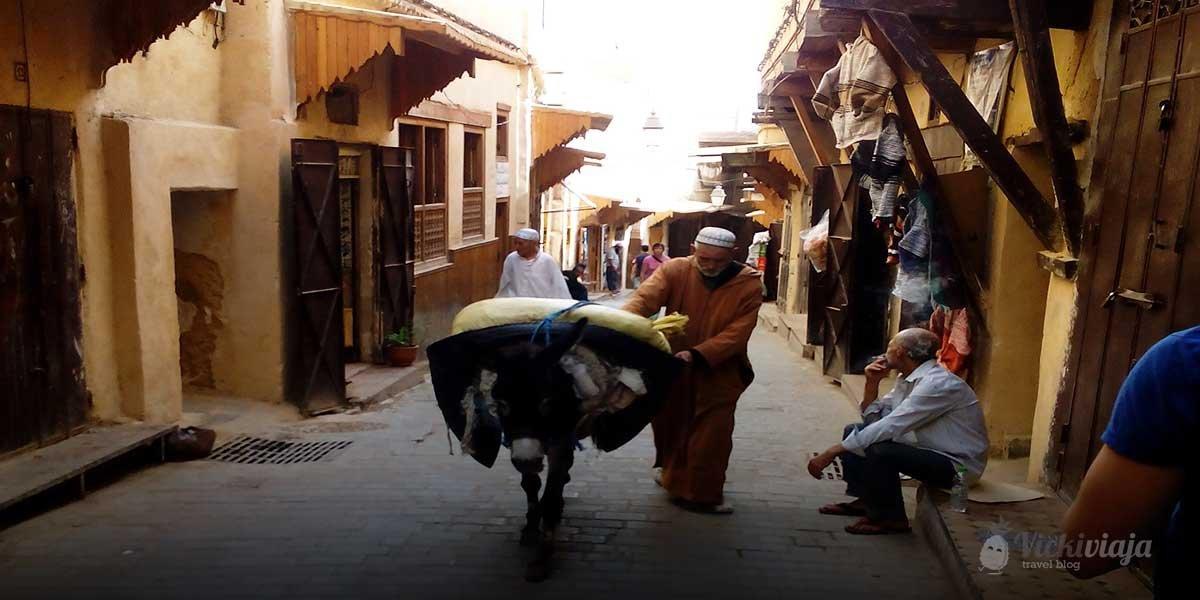 Morocco North, donkey, Medina