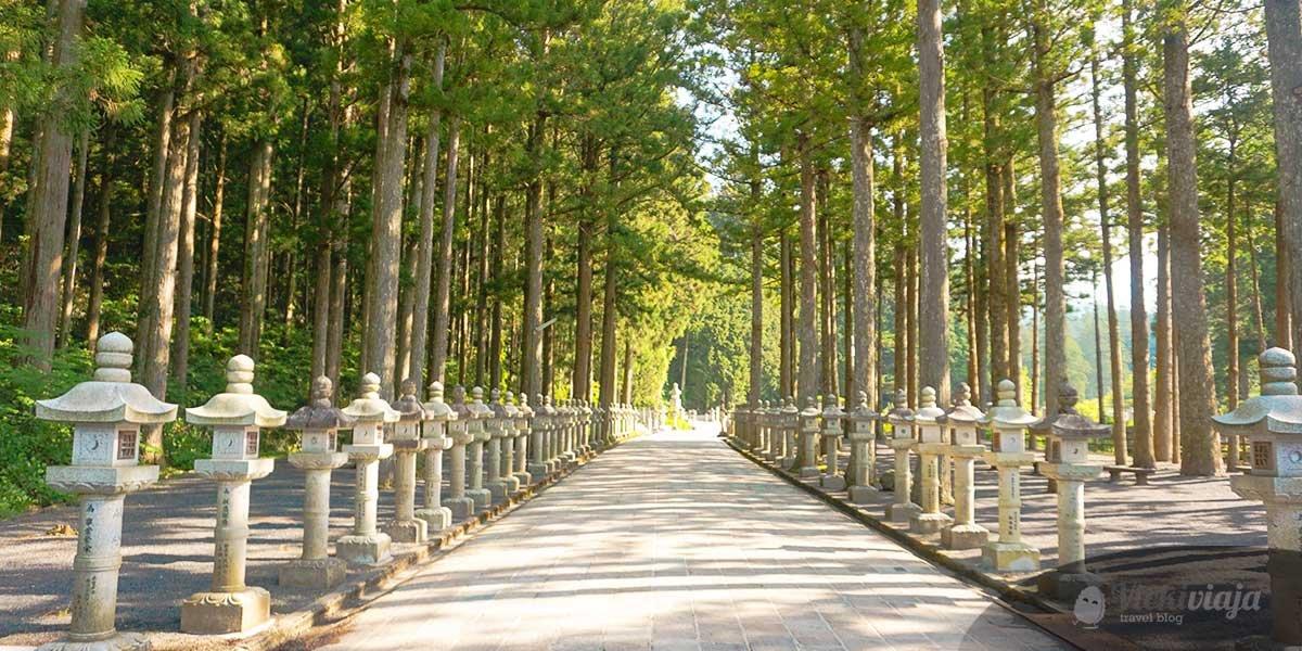 Things to do in Koyasan, Japan, Graveyard, Nature