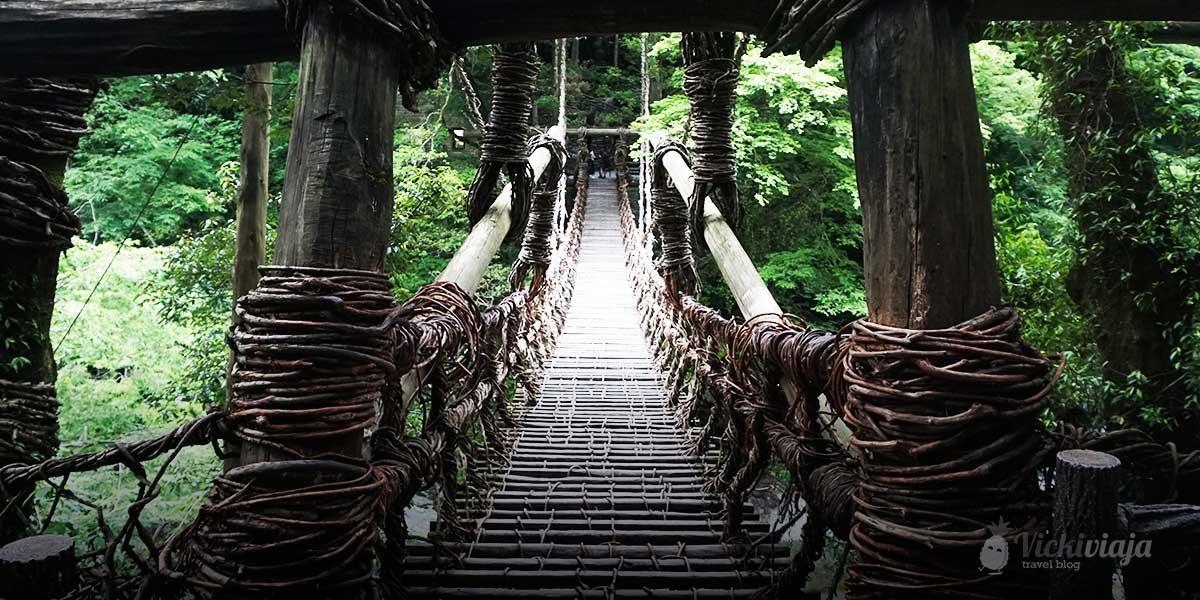 kazurabashi iya valley vicki viaja