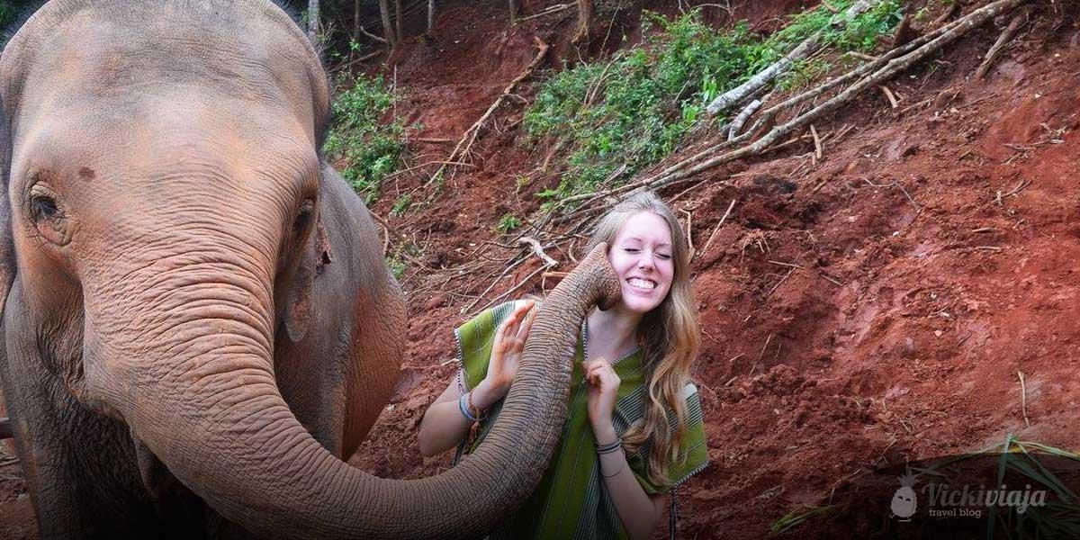 Chiang Mai I Elephant Sanctuary I Thailand I Experience I vickiviaja