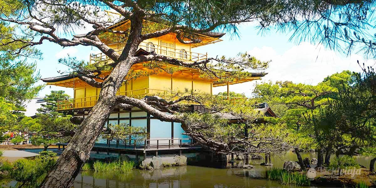 Kyoto Temples, Best traditional Japanese Temples in Kyoto