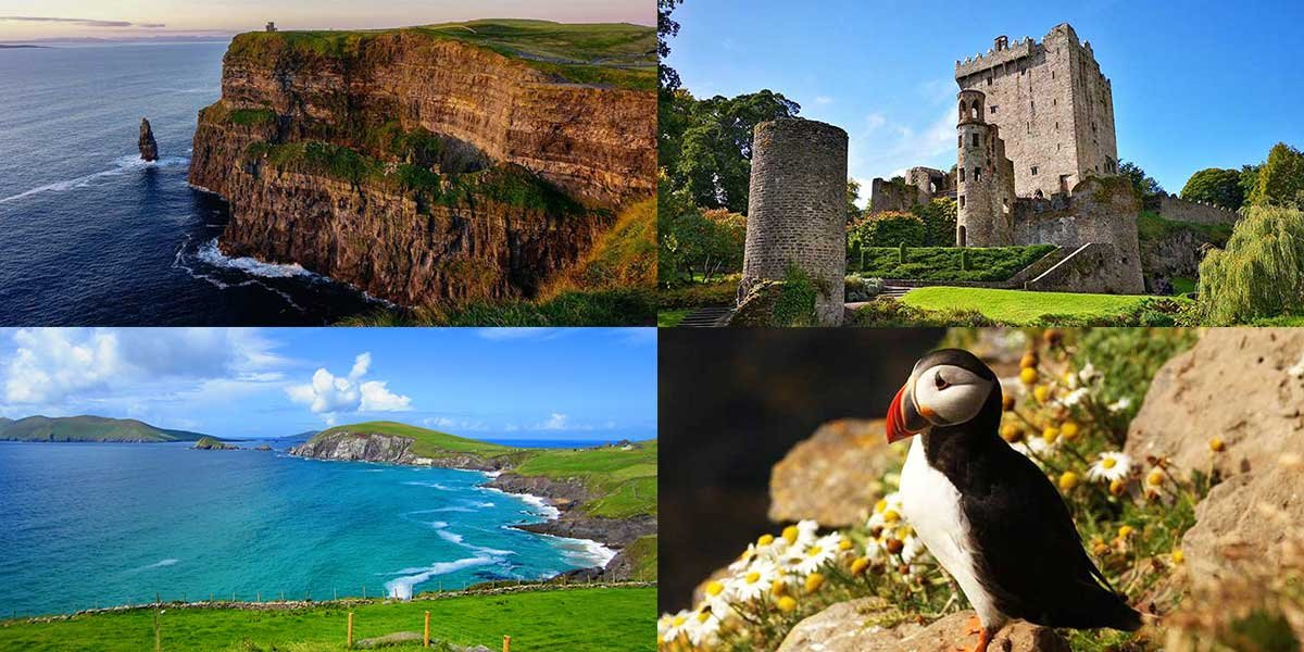 Ireland Itinerary 7 days, Cliffs of Moher, Puffin, Coast, Castle