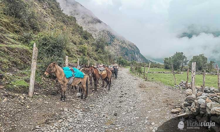 Hiking in Cusco, trek with horses
